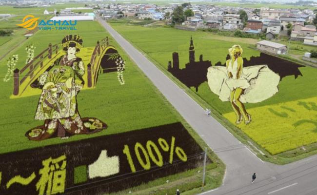 3. Đến Nhật Bản đừng quên ghé thăm đồng lúa bức tranh độc đáo