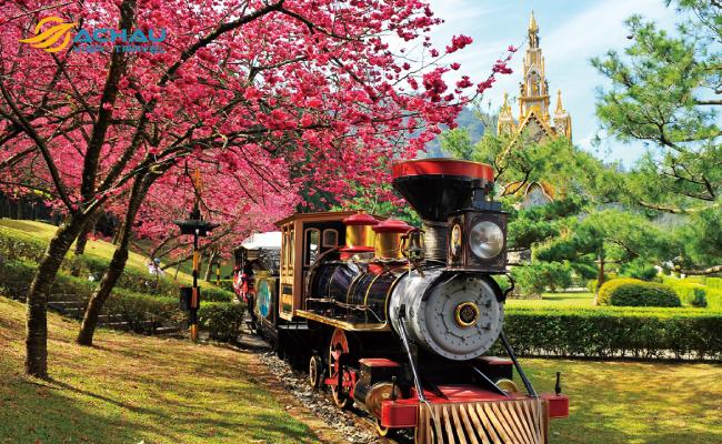Đi du lịch Đài Loan vào mùa nào là thích hợp? 1